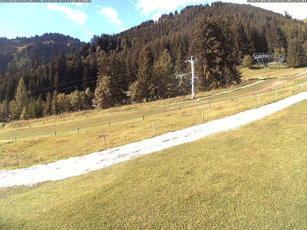 Moléson-Village - 1100 m