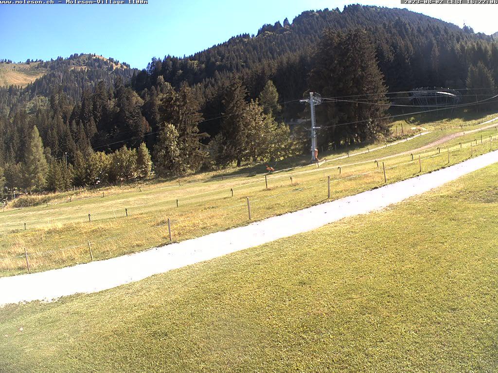 Moléson-Dorf - 1100 m
